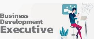 Business Development Executive Interview Questions